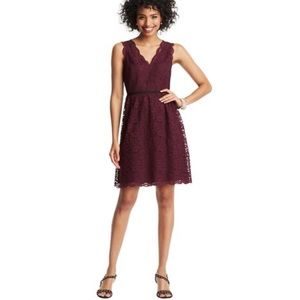 | Loft | Scalloped Sleeveless Lace Dress [Maroon]